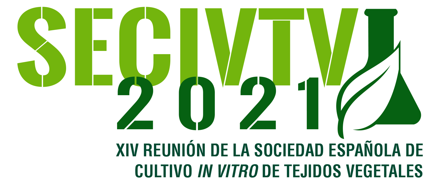SECIVTV 2021